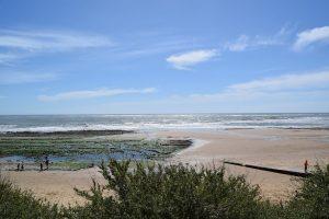 Vacances en vendée : découvrir le bocage et le littoral