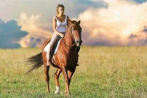 Une randonnée à cheval sur les plages de normandie